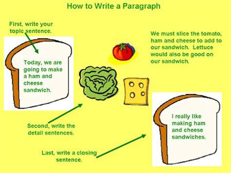 Essay how to write a body paragraph